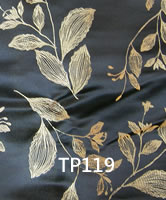 TP119