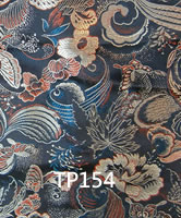 tp154.jpg