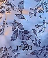 tp293.jpg