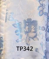 tp342.jpg