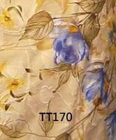tt170