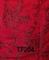 tt204