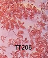 tt206
