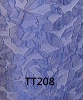 tt208