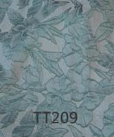 tt209