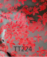 tt224